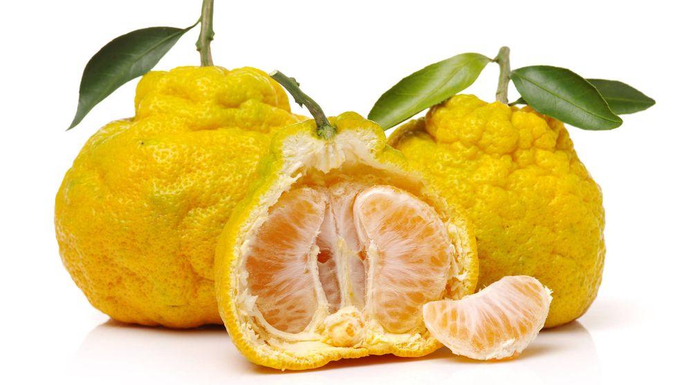 Ugli: un cítrico que solo se cultiva en Jamaica muy rico en vitamina C
