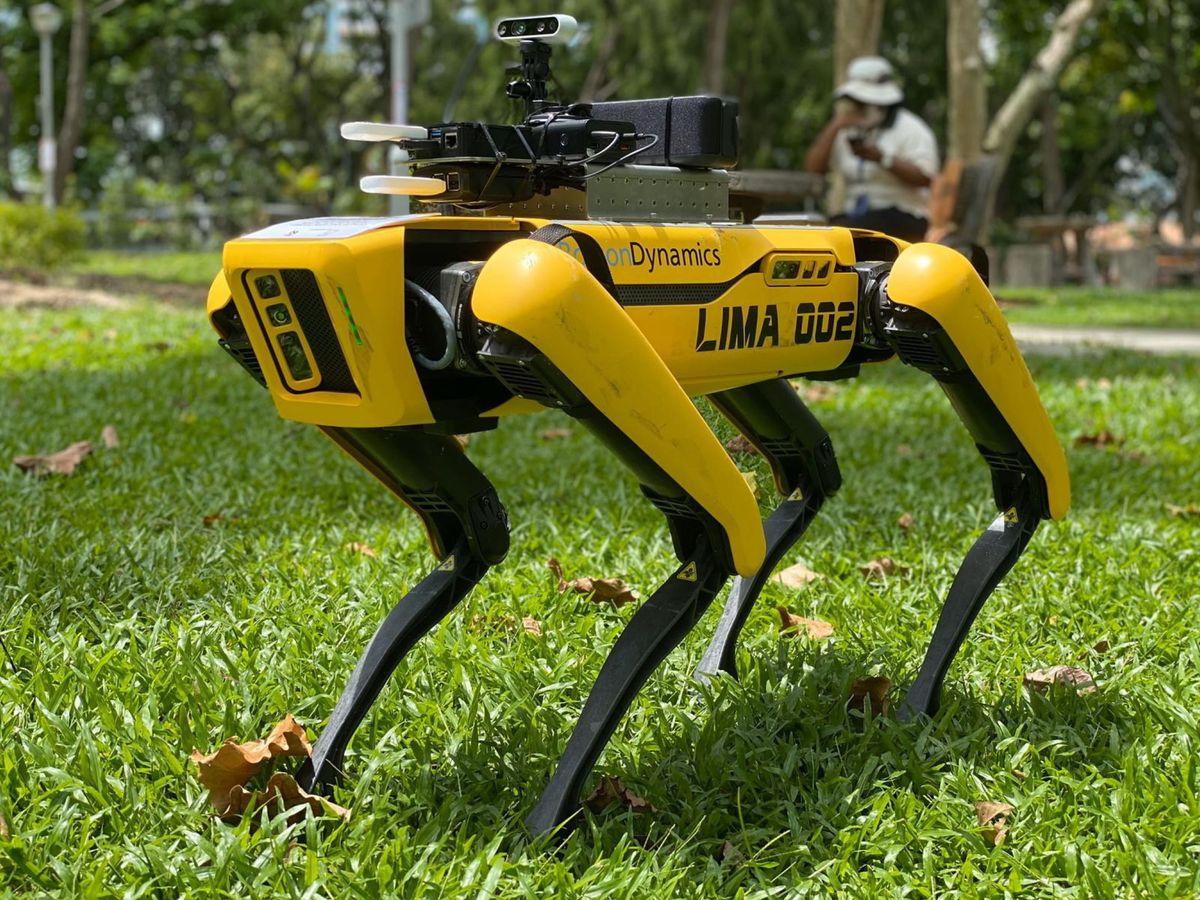 Social: El 'terrorífico' perro-robot que utiliza Singapur para mantener la distancia social