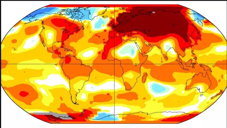 El calentamiento global no frena su avance: 2020 será uno de los años más cálidos