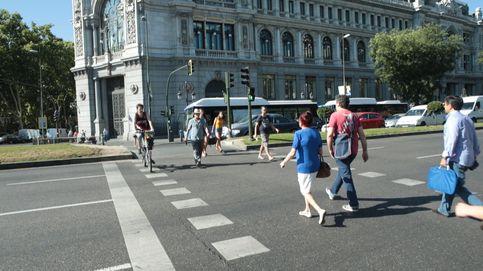 11.000 atropellos cada año en España