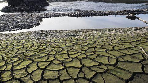 Los resultados de Iberdrola, Gas Natural y Endesa se derrumban a mínimos en España