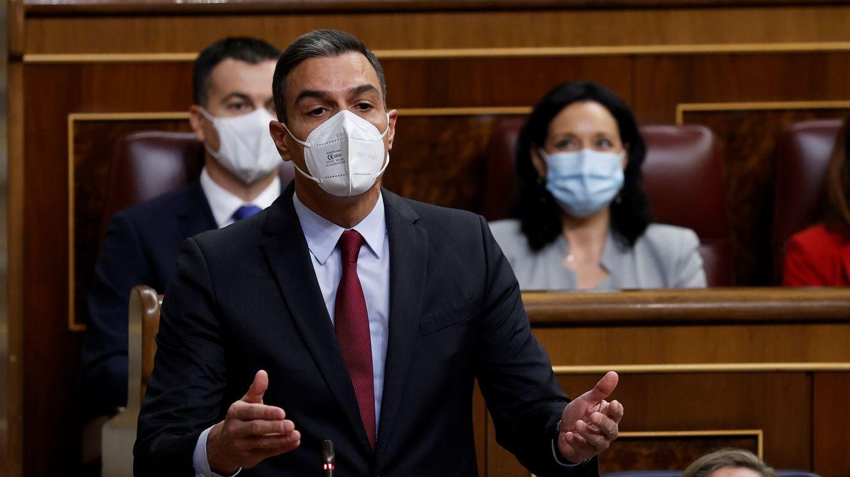 Pedro Sánchez en el Congreso de los Diputados. (EFE)