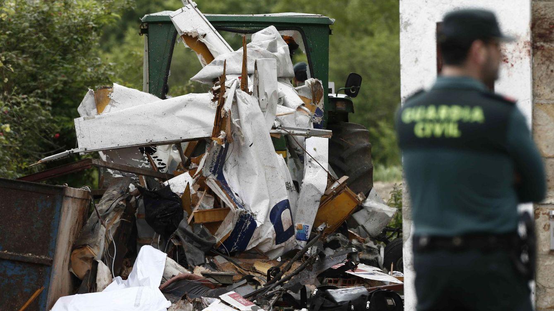 Los buitres, un peligro para los aviadores: diez muertos en España en lo que va de año