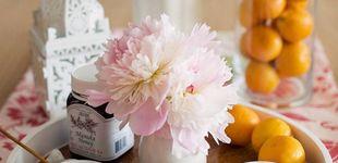 Post de Descubre la cosmética vegana y las cremas de las que todo el mundo habla