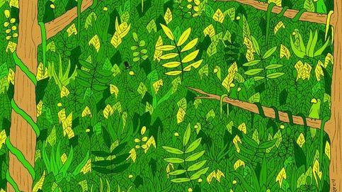 El último acertijo visual: ¿puedes descubrir a la serpiente en la jungla?