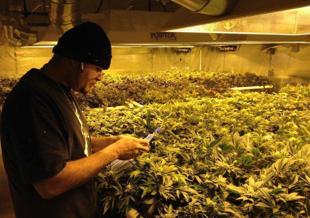 Foto: Dispensario de marihuana en Washington. (EFE)