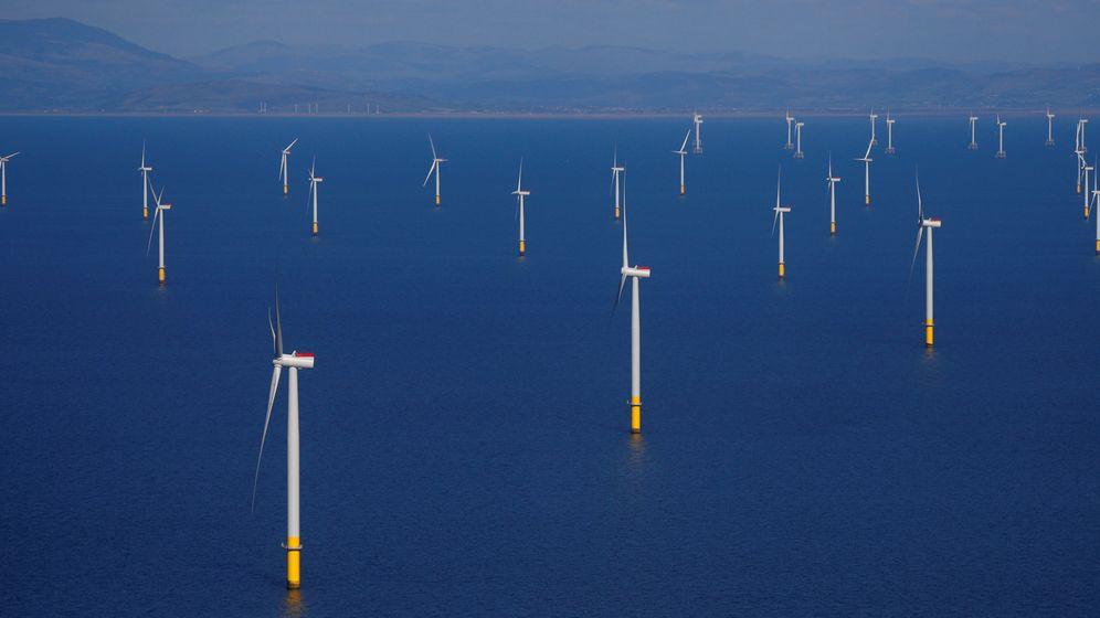 Foto: Foto de archivo de un parque marino eólico. (Reuters)