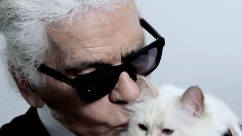 Choupette, la gata influencer de Karl Lagerfeld que cobra 3M de euros al año