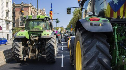 Los payeses aparcan el primer tractor en un colegio para ir calentando motores