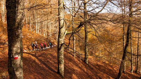 7 planes diferentes por España para disfrutar del otoño