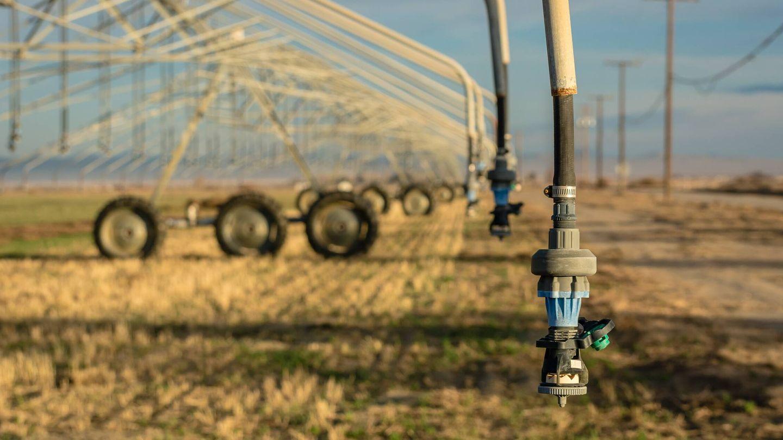 La falta de agua puede comprometer nuestro acceso a la comida. Foto: Unsplash