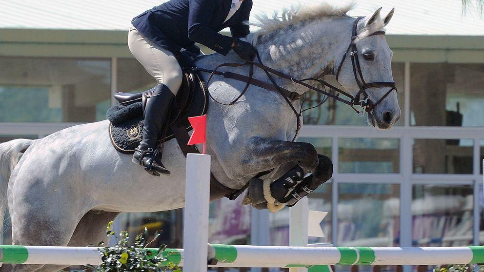 Carlo, el caballo de 12 millones que Amancio regaló a su yerno