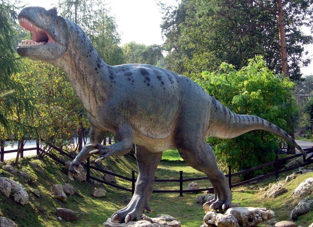 Foto: Modelo del Allosaurus en Baltow, Polonia