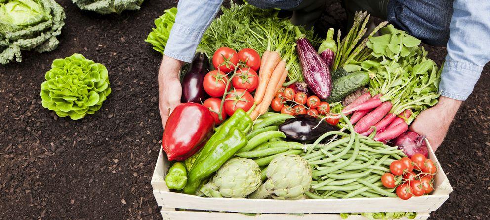 Foto: Para aprovechar al máximo las propiedades de estos alimentos, lo mejor es que provengan de los mercados locales, especialmente de agricultura ecológica. (iStock