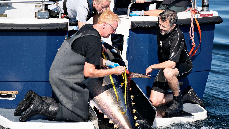 El príncipe observa cómo marcan a un ejemplar de atún. (EFE)