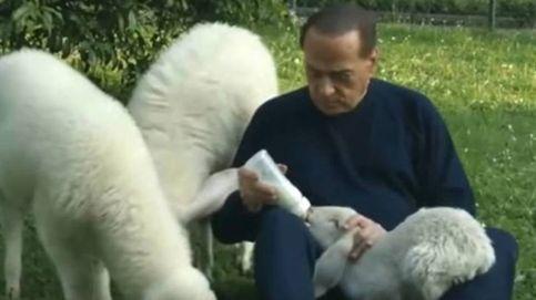 Berlusconi pide a los italianos que no coman cordero en Pascua