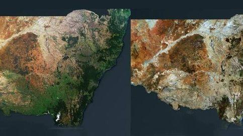 Así es el antes y el después de los incendios en Australia visto desde el espacio