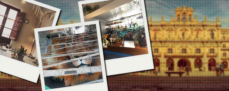Foto: Salamanca en clave 'cool': estos son los lugares más de moda en la ciudad del Tormes (Fotomontaje: Vanitatis)