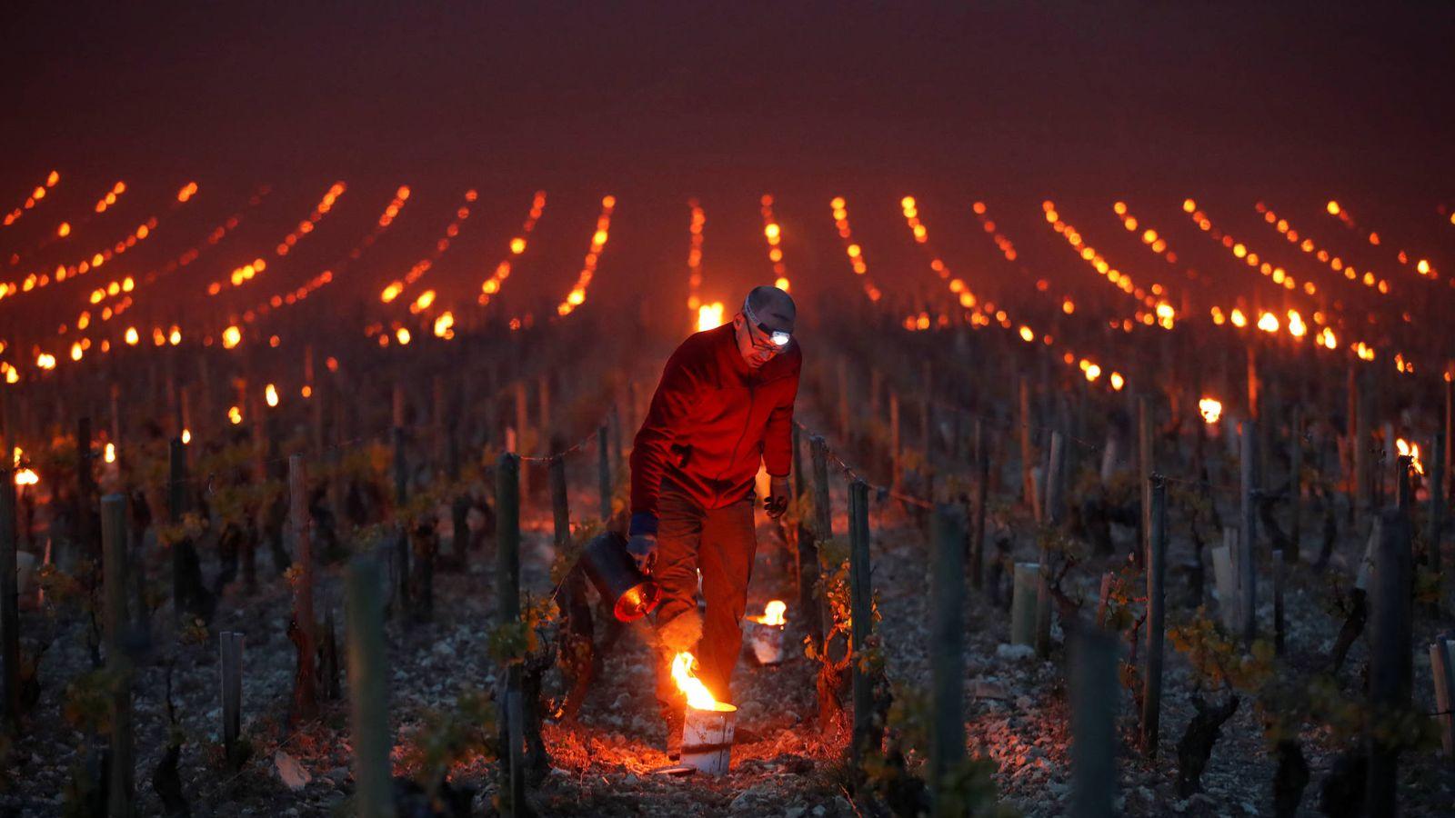 Foto: Trabajadores encienden pequeños fuegos para proteger los viñedos del frío cerca de Chablis, Francia. (Reuters)