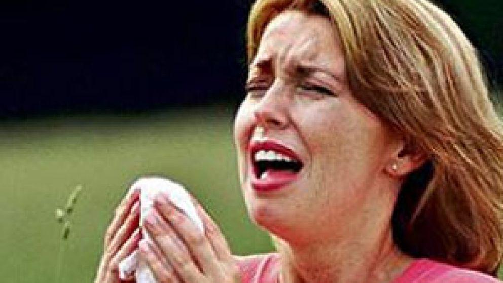 Llega a España la primera vacuna oral frente al polen de gramíneas