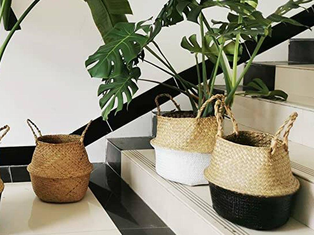 Foto: Cestas sostenibles para decorar los rincones de tu casa de un forma ecológica (Cortesía)