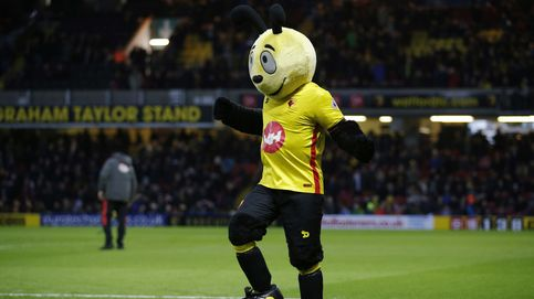 El baile de Harry the Hornet