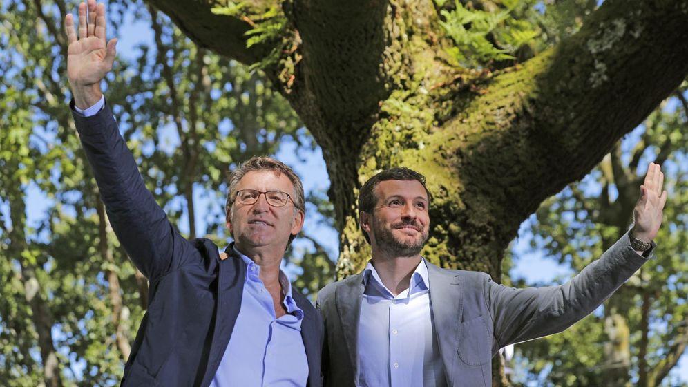Foto: El presidente del Partido Popular, Pablo Casado y el presidente de la Xunta de Galicia, Alberto Núñez Feijóo. (EFE)