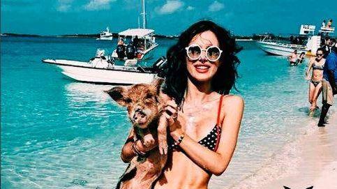 El posado más 'cerdo' de la actriz Bella Thorne en bikini