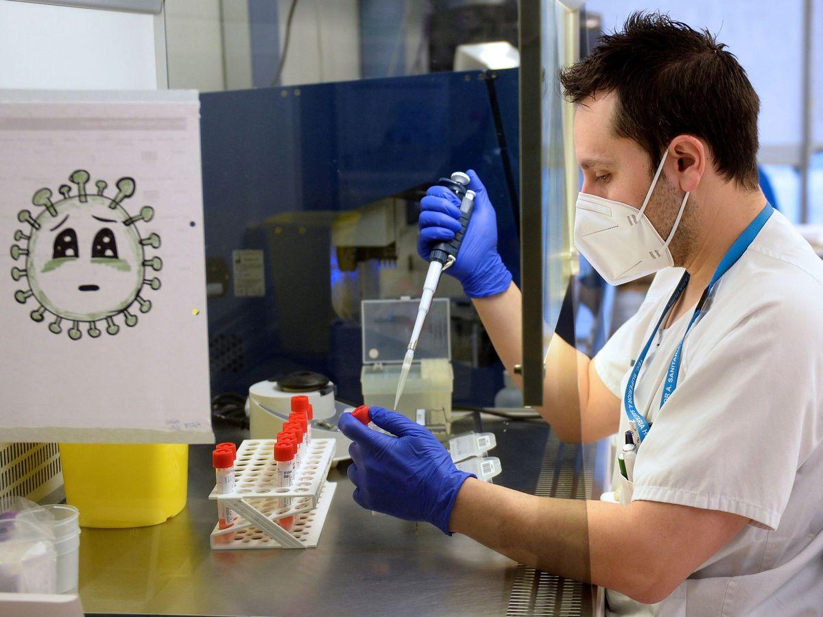 Foto: Un técnico de laboratorio analiza pruebas PCR. (EFE)