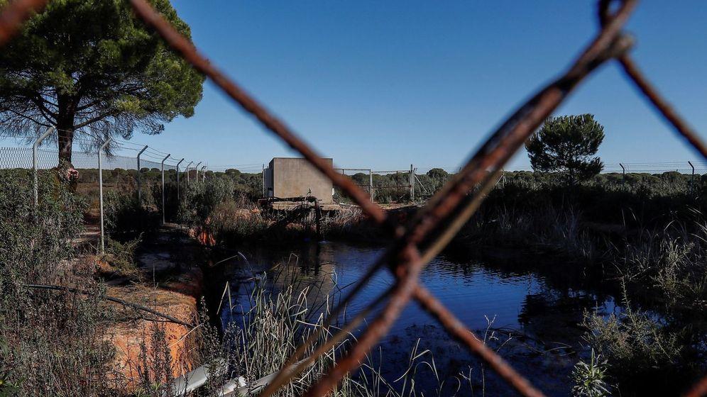 Foto: Balsa de riego ilegal construida cerca de algunos de los 77 pozos que la Confederación Hidrográfica del Guadalquivir (CHG) . (EFE)
