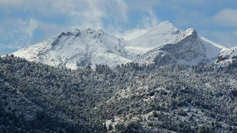 Vídeo | La Sierra de las Nieves, un parque nacional para los abetos del sur