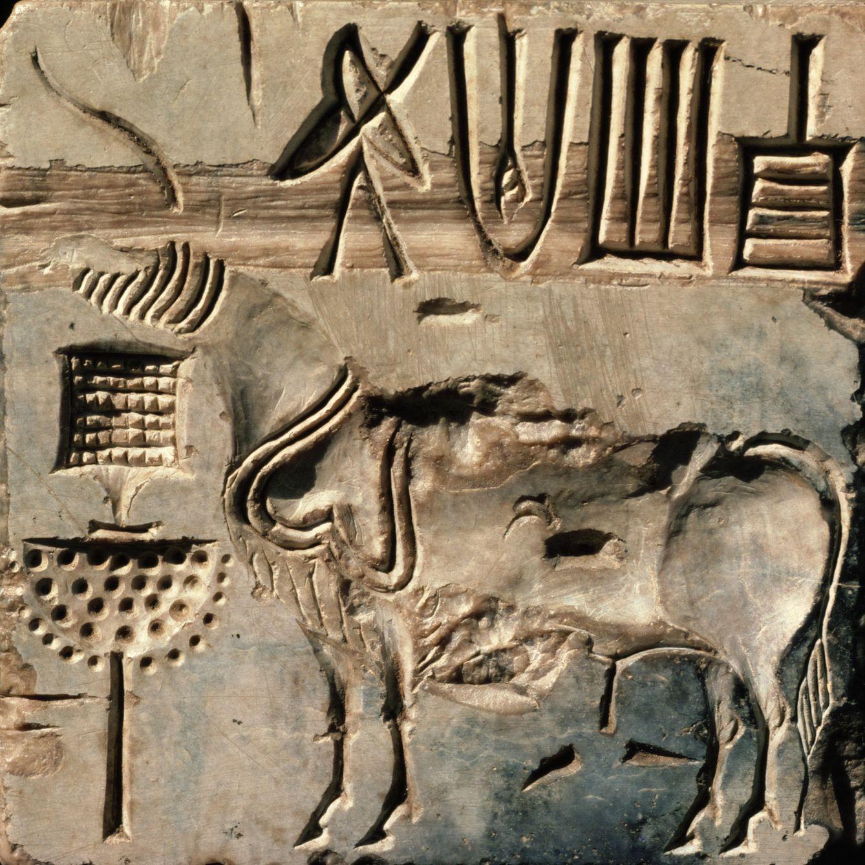 Foto: El sello indo con el supuesto animal fantástico. (Robert Harding/Corbis)