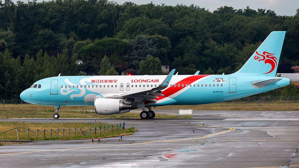 La pasajera no deseada: una rata en cabina obliga a un avión a volver al aeropuerto