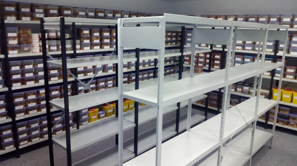 Foto: El almacén donde se guarda en formol el hemisferio izquierdo de los cerebros.