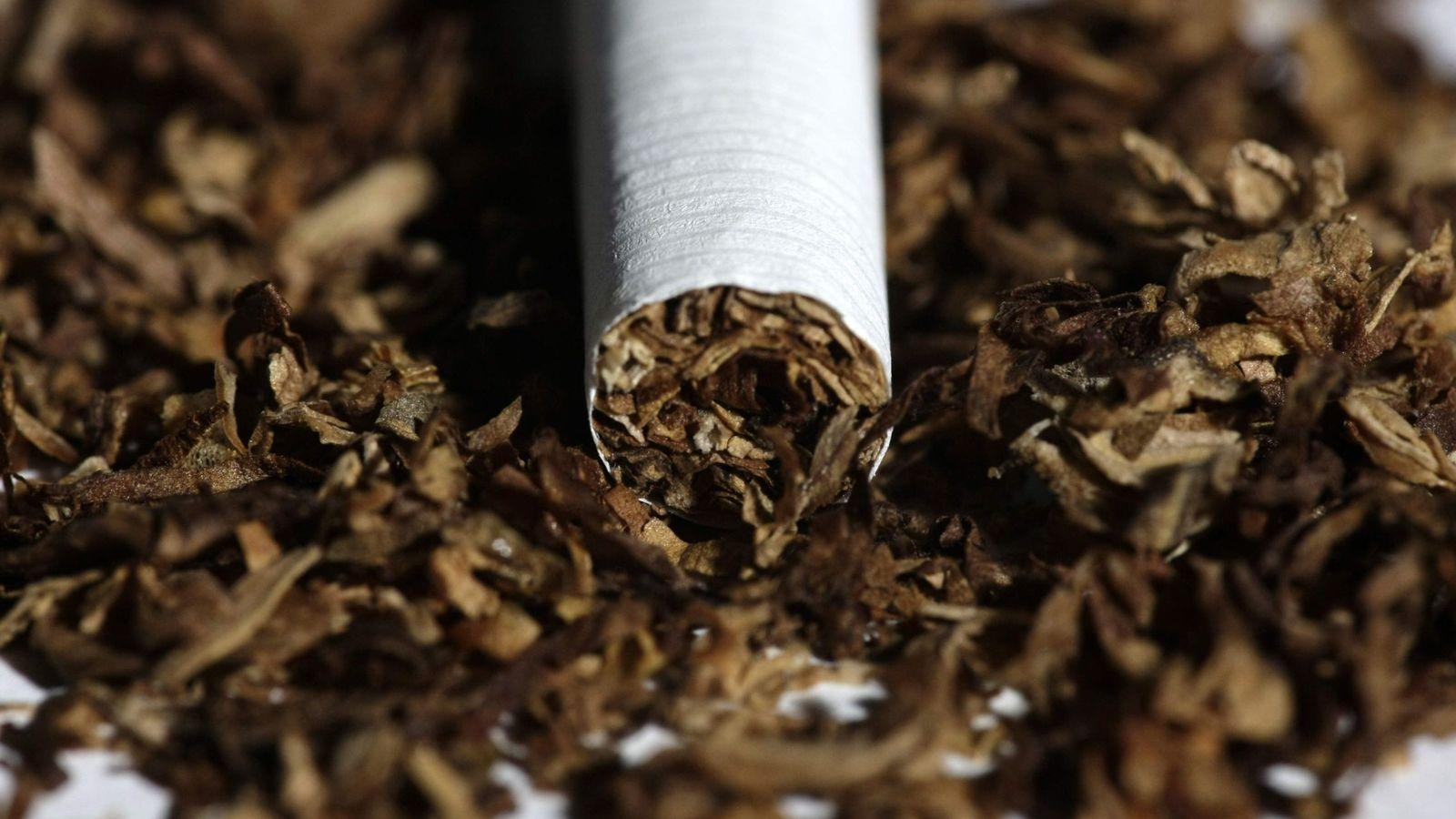 Foto: Tabaco. (EFE)