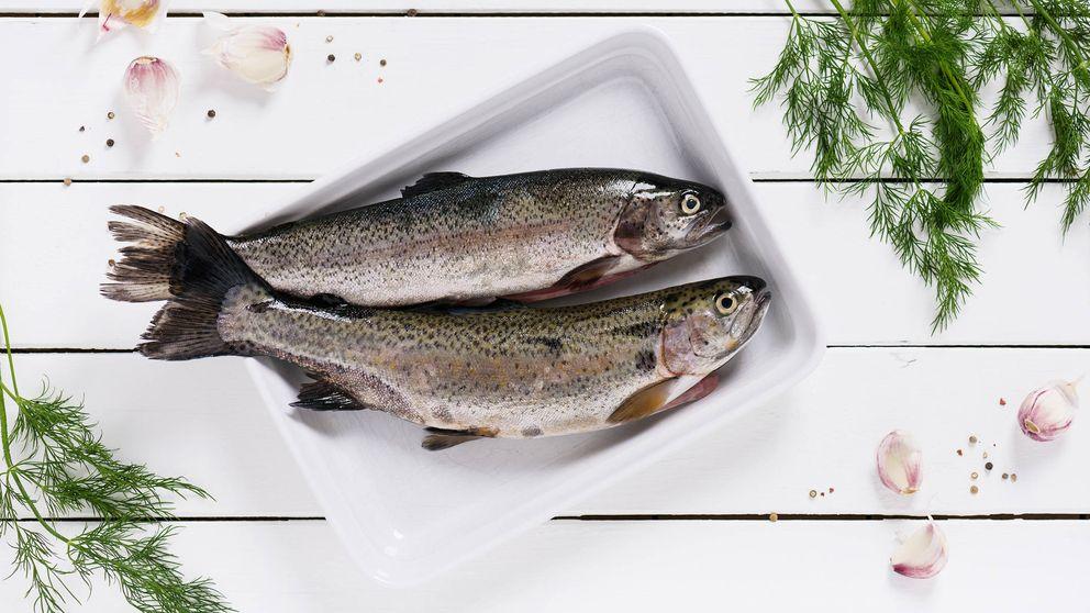 China convierte oficialmente las truchas arcoiris en salmón