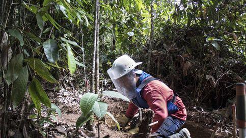 Colombia ante la paz: el guerrillero que quita las minas que él mismo plantó