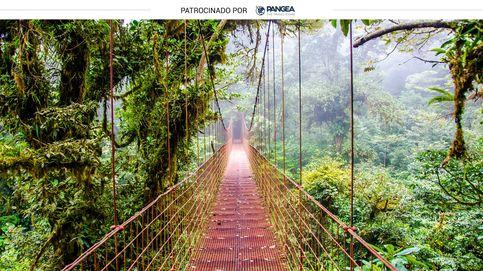 Viaje por la perla verde de Centroamérica: pura vida en Costa Rica