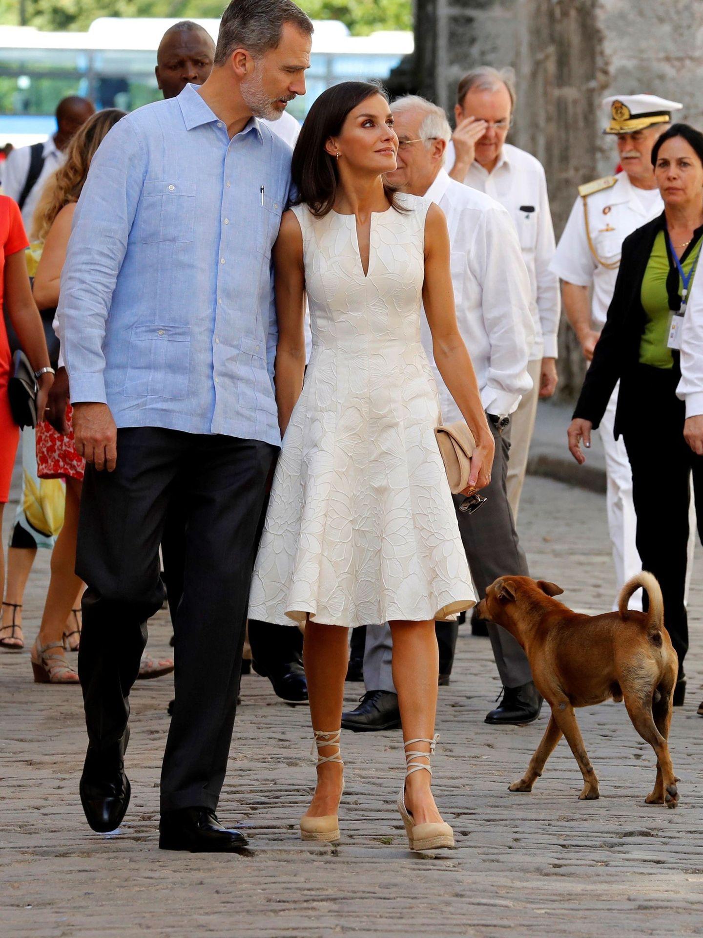 Los Reyes con un perro callejero. (EFE)