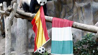 ¿Importa si España ha alcanzado a Italia en renta per cápita?