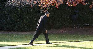 La mitad de los americanos dice que vive peor desde que Obama llegó a la Casa Blanca