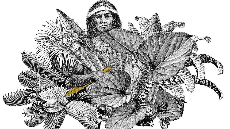 Ilustración de Alejandra Acosta. (Geoplaneta)