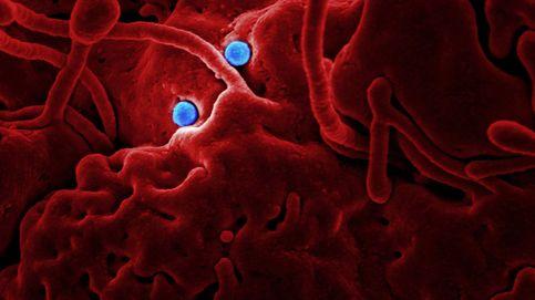 El desequilibrio bacteriano causa problemas serios y no lo sabes