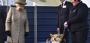 Post de La reina Isabel II combate la soledad con dos nuevos cachorros corgi