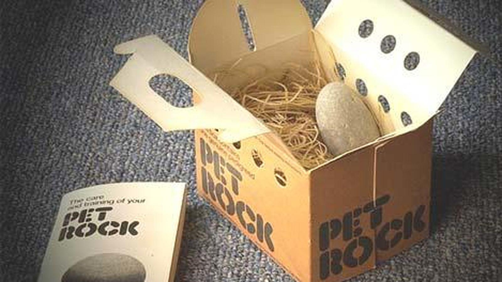 Foto: Las piedras-mascota se reciben en una caja con libro de instrucciones