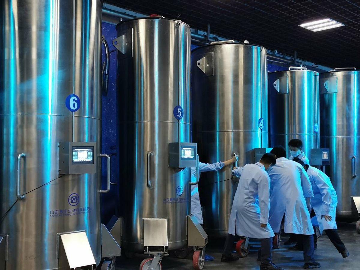 Foto: Hay varios centros en el mundo que estudian la criogenización. (Life Science Research Institute)