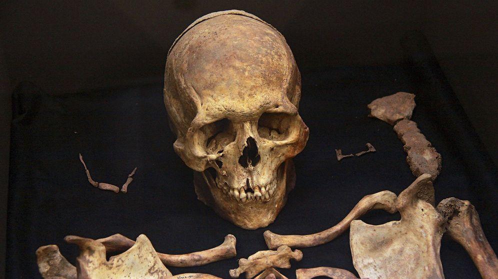 Foto: Restos humanos del Mesolítico hallados en Braña-Arintero, en la cuenca del Duero