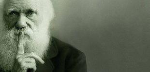 Post de  Cómo pensaba Darwin: la regla de oro de uno de los grandes científicos