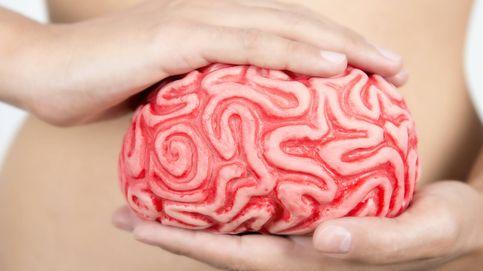 Psicobióticos: las bacterias que te salvarán de la depresión y el estrés