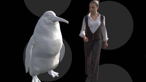 El pingüino monstruo existió: hallan fósiles de un ejemplar del tamaño de un humano
